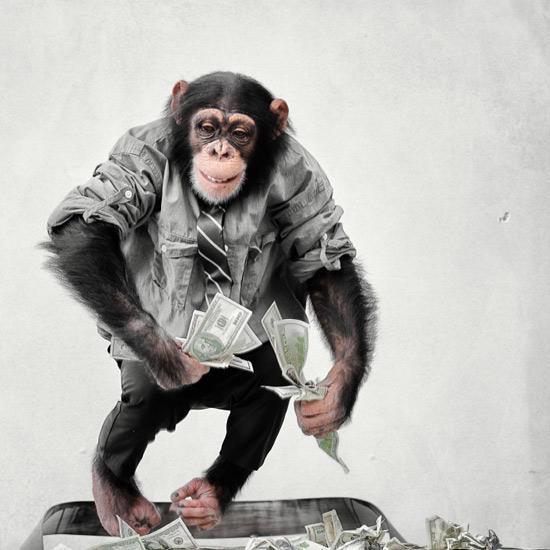 деньги и обезьяна