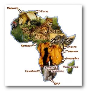 Samie bogatie ludi Afriki
