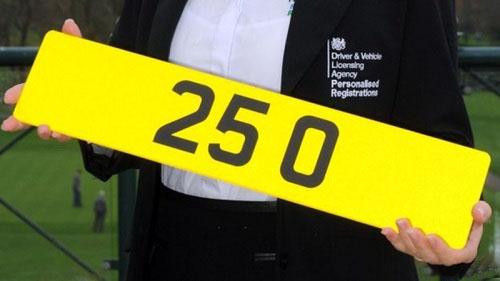 номерной знак 25 0