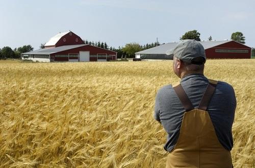 планирование сельского хозяйства