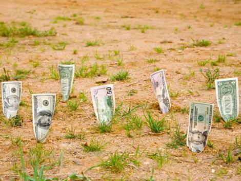 инвестирование в землю
