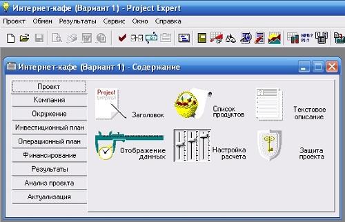 project expert проект