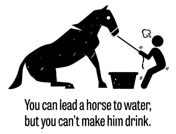 напоить лошадь