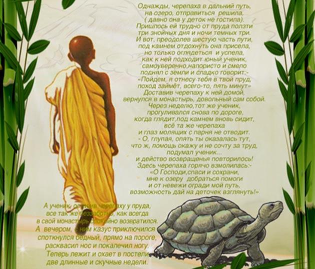 притча о черепахи